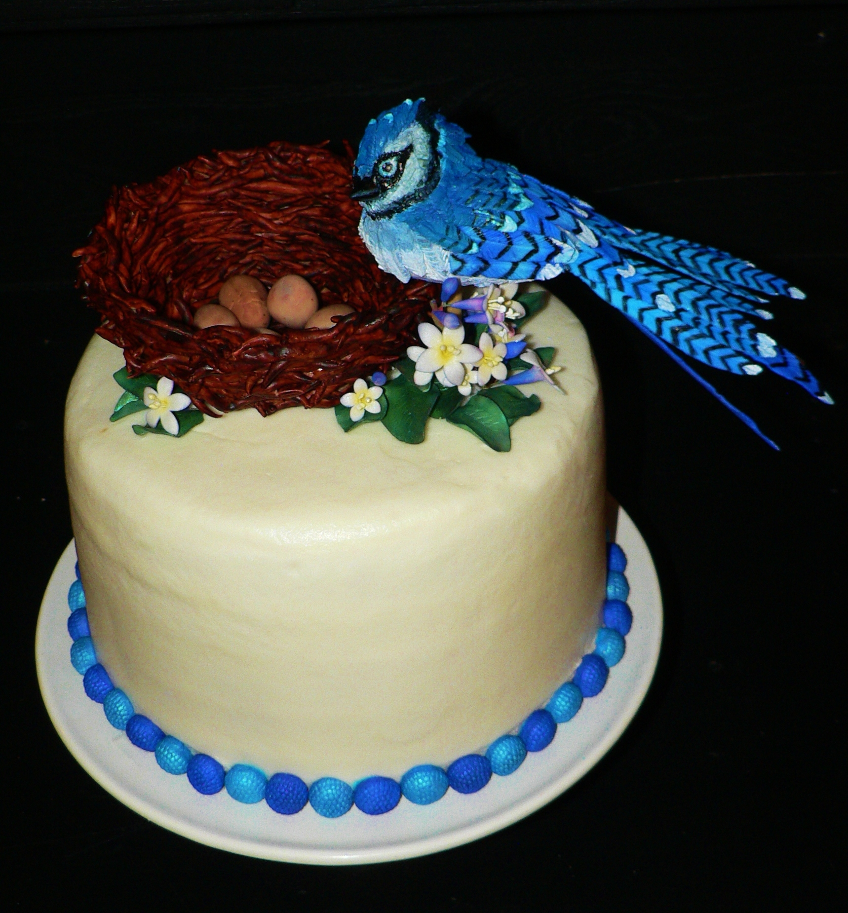 Blue Jay Birthday Cake - CakeCentral.com
