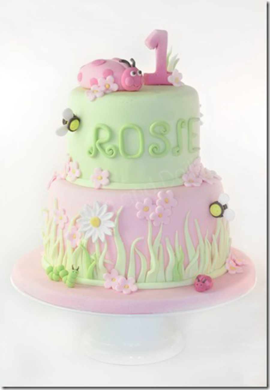 Pink Lady Bug 1St Birthday Cake CakeCentralcom