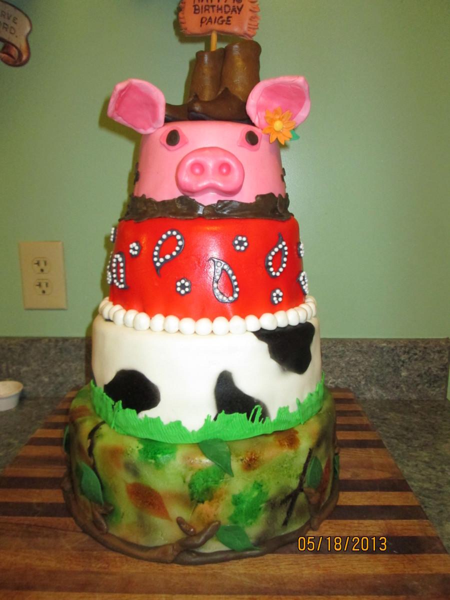 Fantastic Redneck Cake For My Granddaughters 16Th Birthday Bottom 2 Layers Funny Birthday Cards Online Alyptdamsfinfo