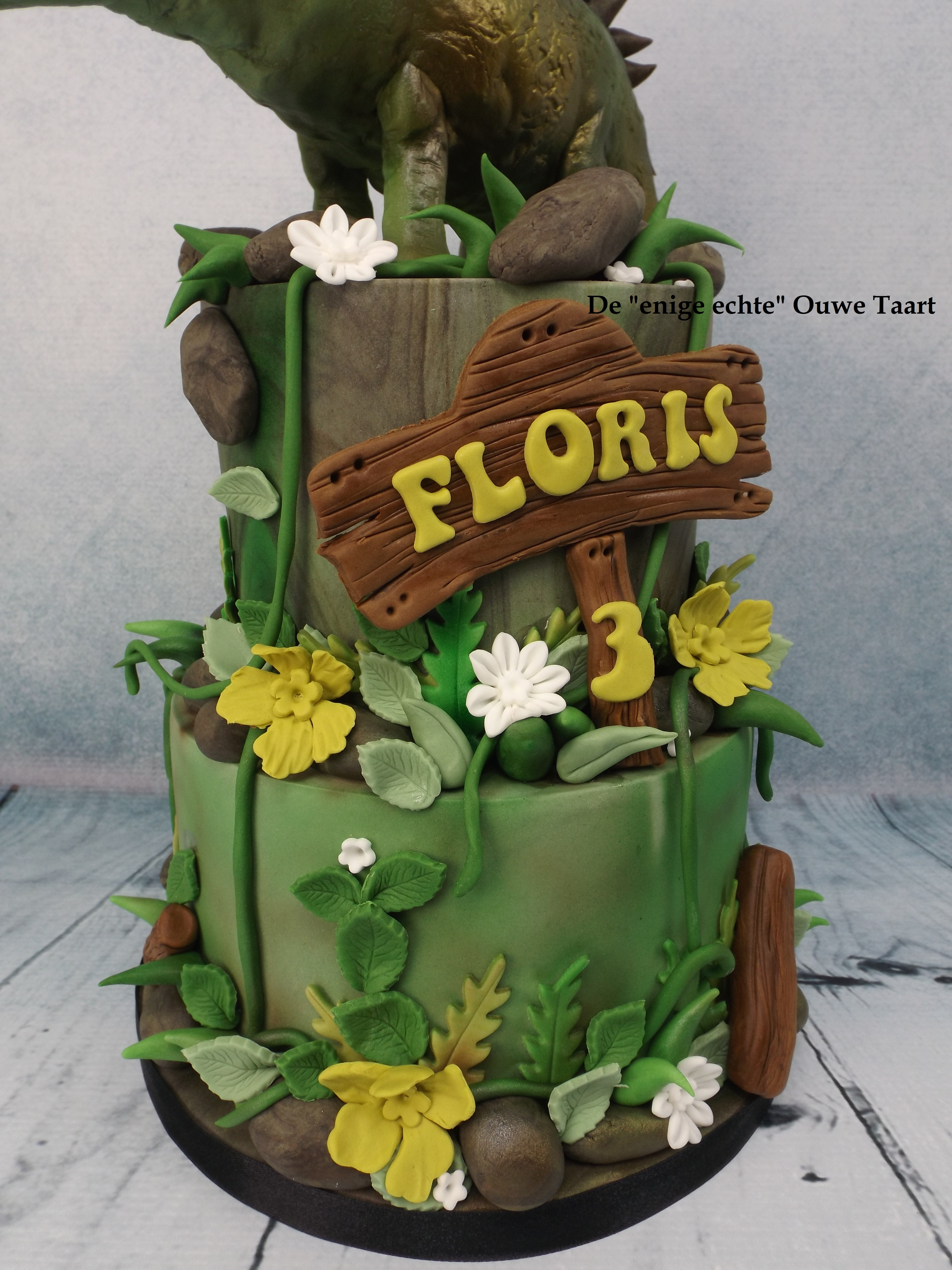 Dinosaur Agustinia Cake For A 3 Year Old Child
