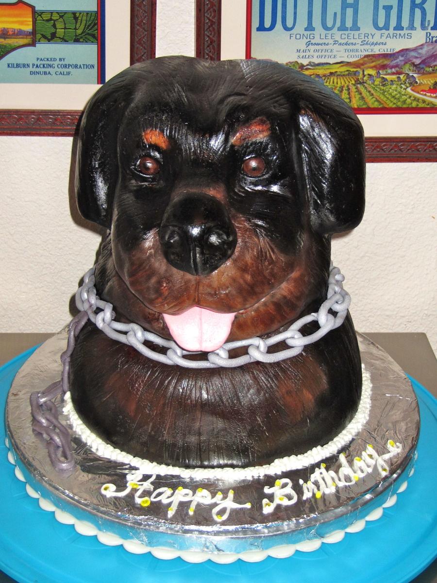 Rottweiler Sculpted Cake Cakecentral Com