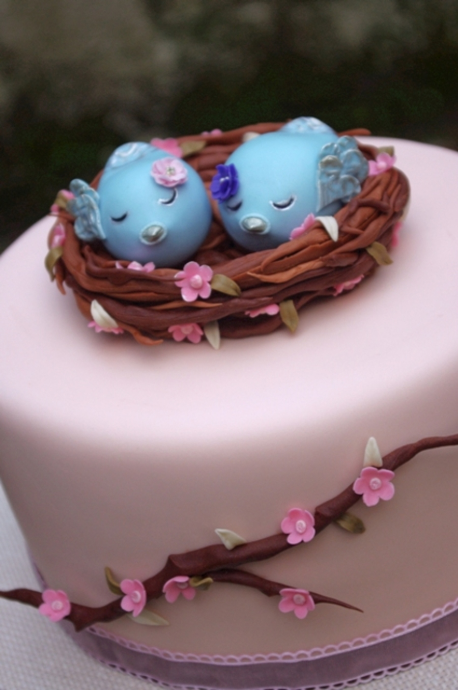 Sister Birds Cakecentral