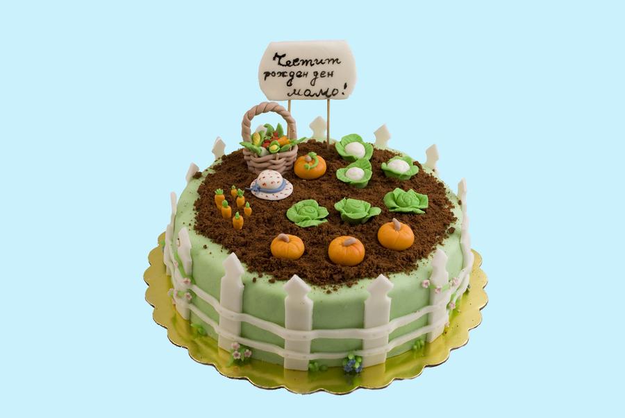 Vegetable Garden Cake For Grandma - CakeCentral.com