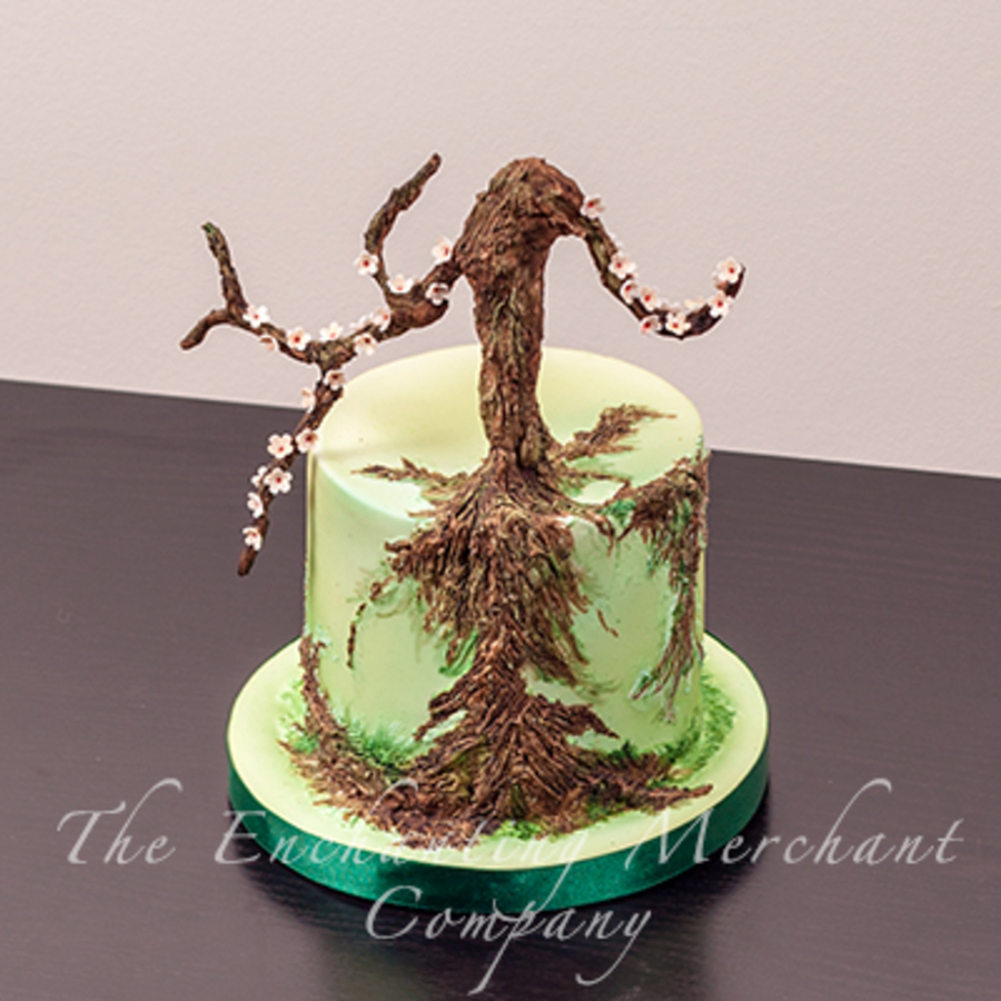 Cake Decorating How To Make Soil : Bonsai Cake - CakeCentral.com