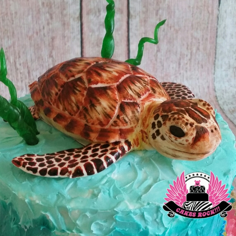 Sea Turtle Cakecentral Com