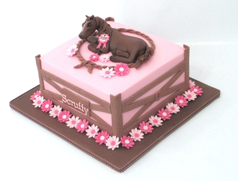 Horse Cake With Daisy Lined Fence Cakecentral