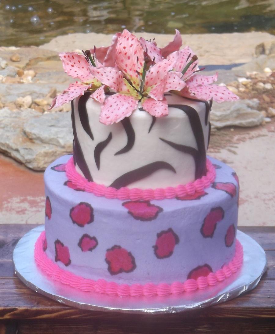 Animal Print B Day Cake On Central