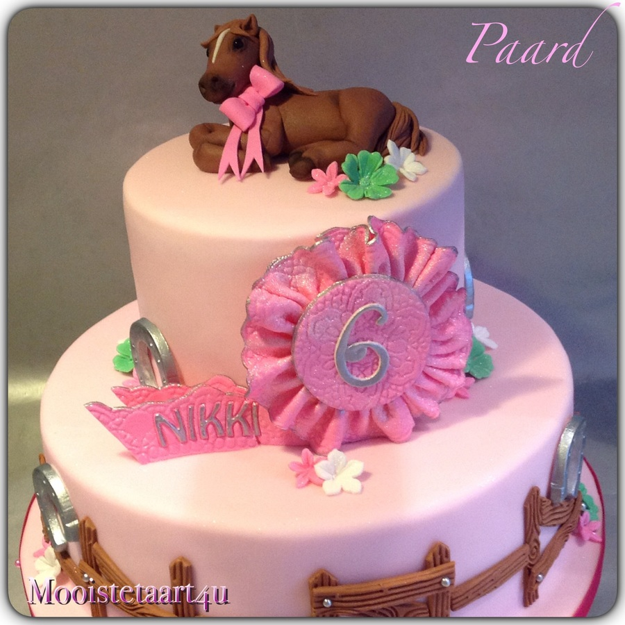A Horse Cake For A Little Girl Cakecentral Com