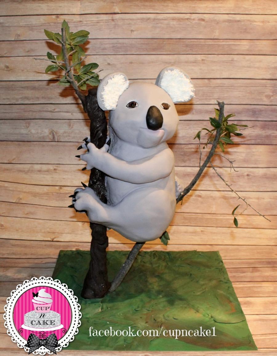Koala Bear Cake Recipe