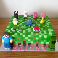 Minecraft Cake - Birthday Cake   All edible.
