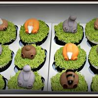 Animal Butts Cupcakes   These cute cupcakes were for a baby shower.