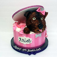 Puppy In A Box Fondant with fondant accents RKT dog