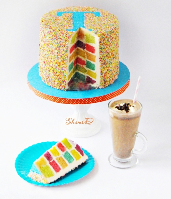Sprinkles And Checkerboard Cake