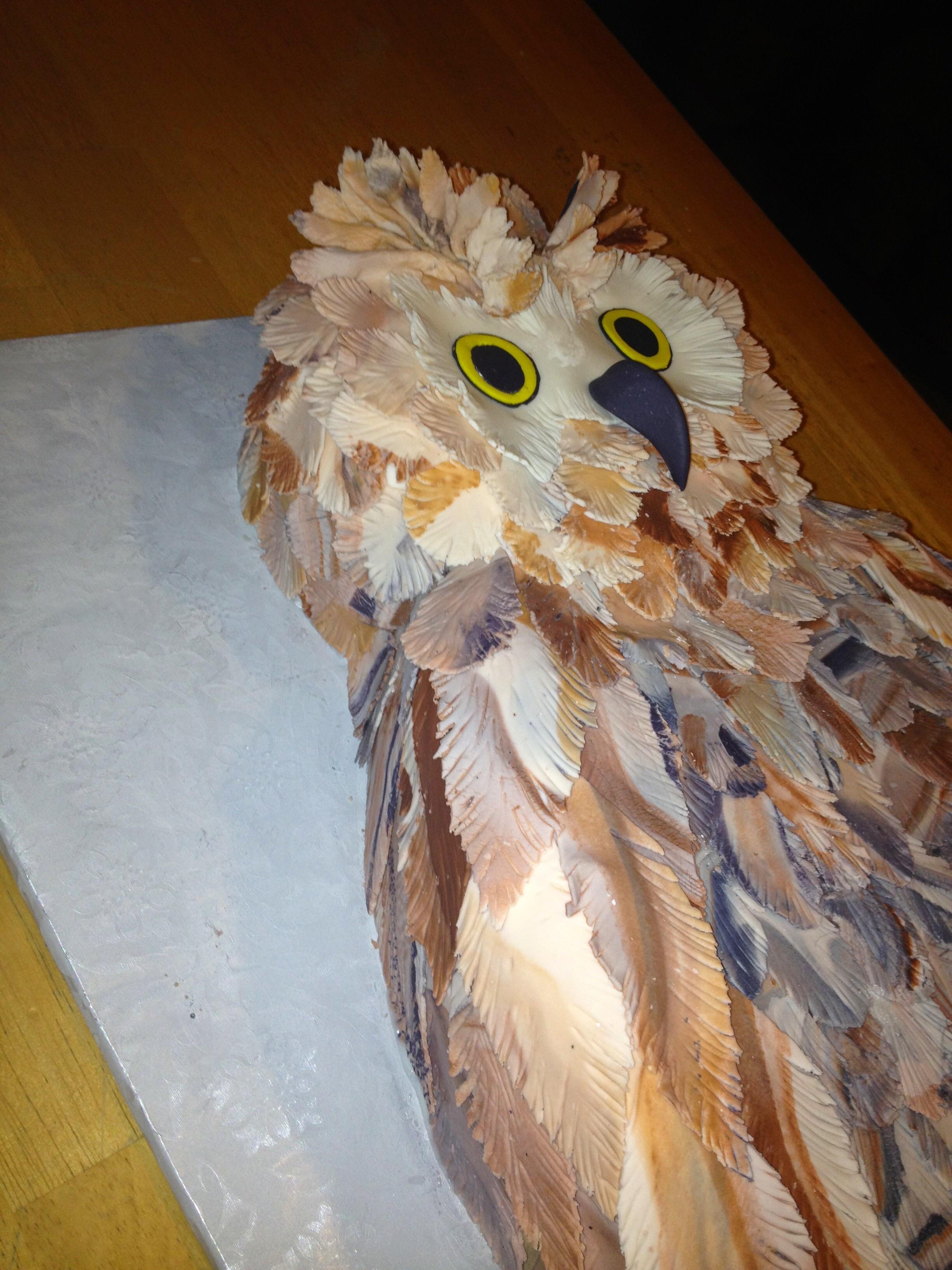 Owl Birthday Cake CakeCentralcom