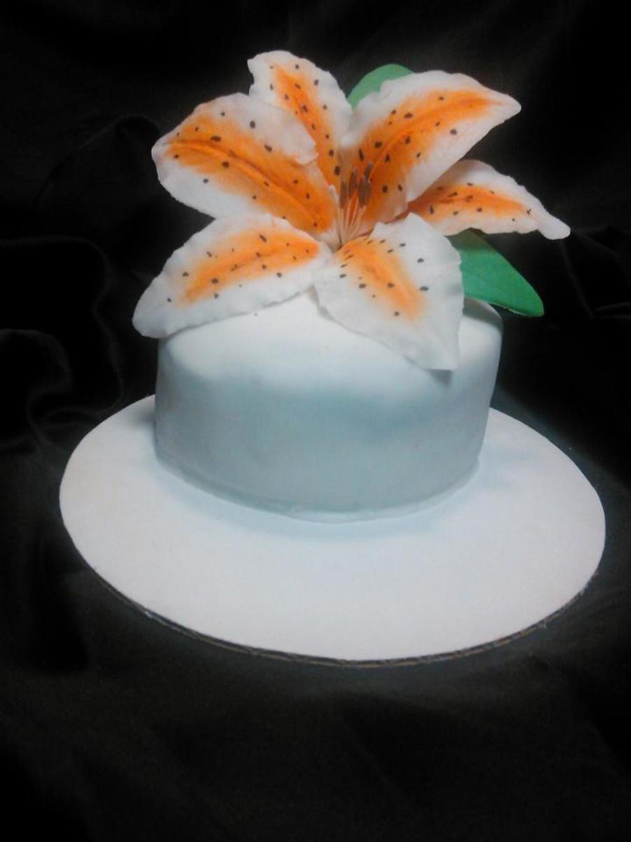 Practice With Flowers on Cake Central