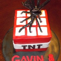 Minecraft Tnt Cake Chocolate cake with Oreo filling and vanilla buttercream. Covered in fondant. Twizzlers on top