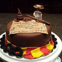 Harry Potter Retirement Cake First attempt at Harry Potter.