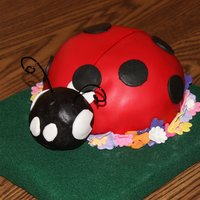 Mom's Ladybug The cake is a chocolate raspberry mud cake filled with a raspberry violet filling and then covered with a chocolate ganache.