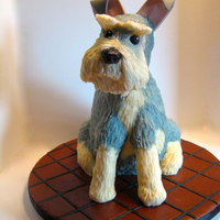 Schnauzer Cake My little grand niece has wanted a dog all her short life. I made this for her 6th birthday. It was the Schnauzer cake I started last year...