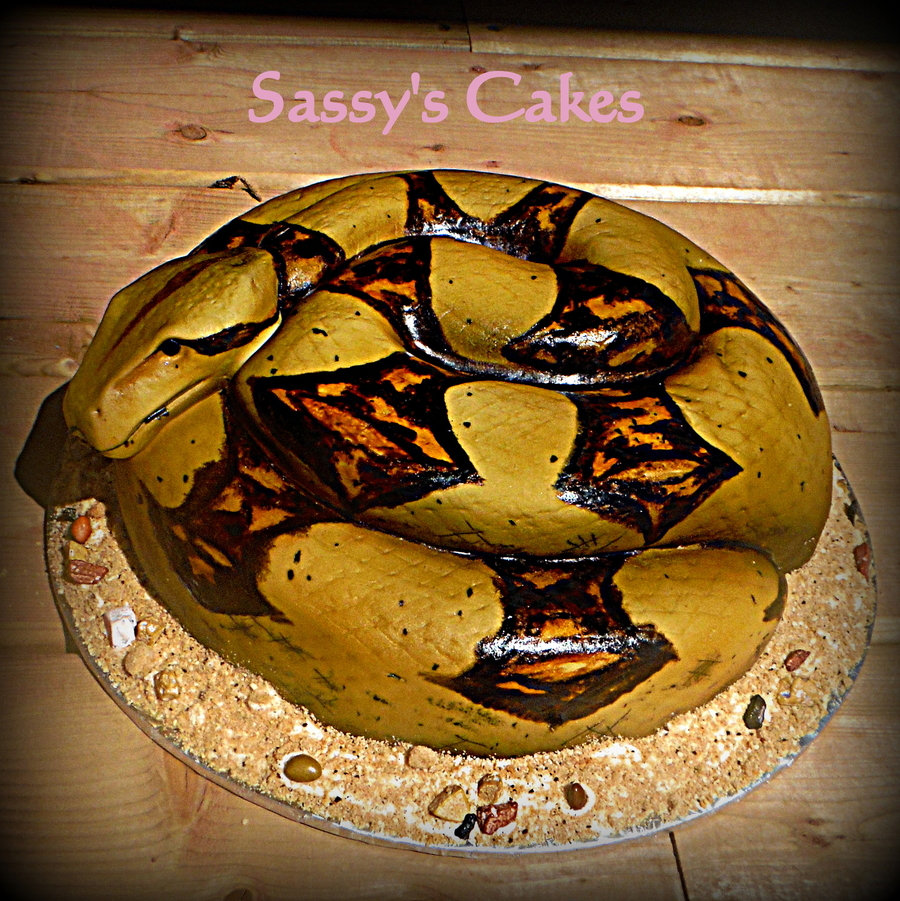 Snake Cake With Tutorial Cakecentral Com