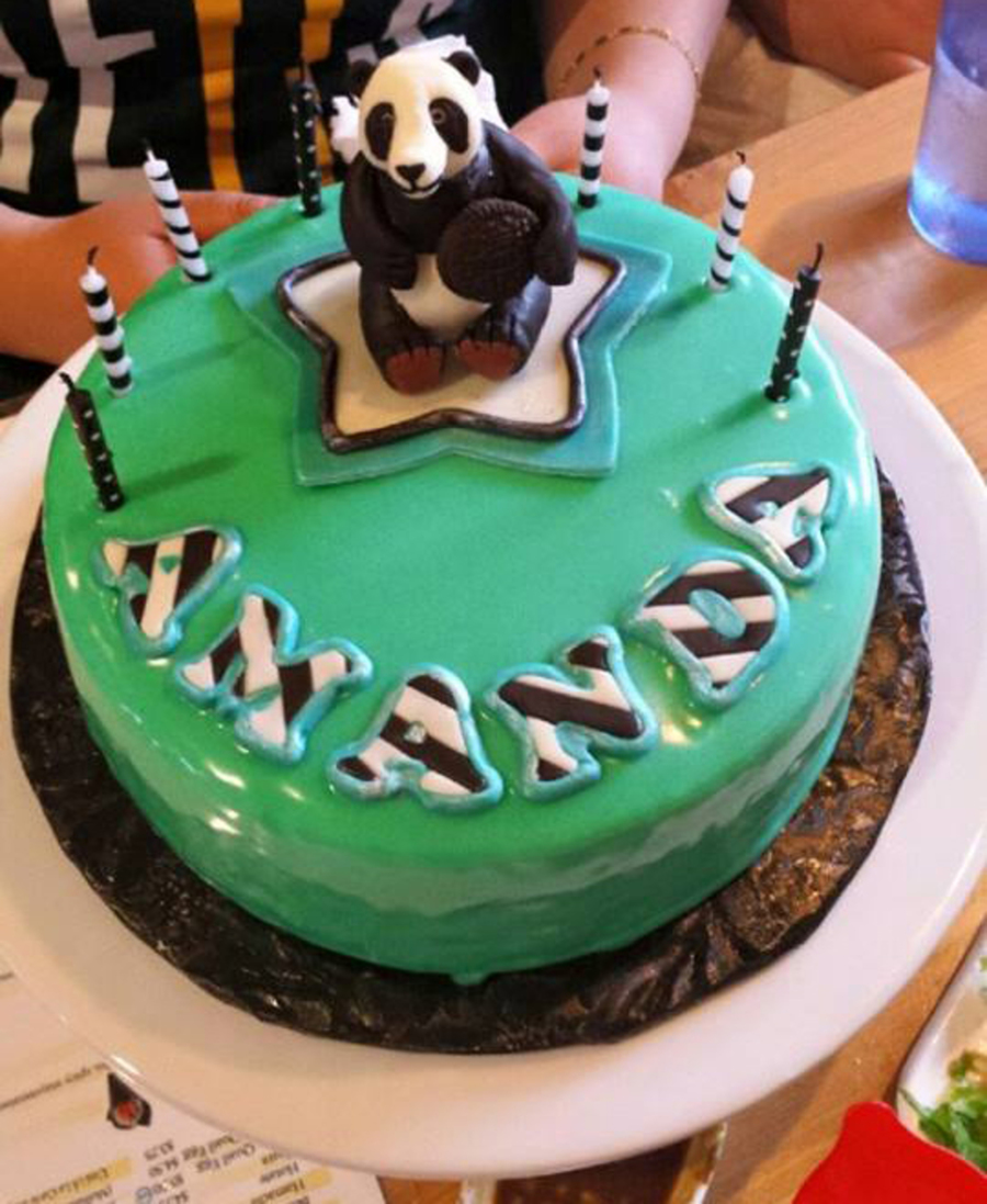 Amanda Panda Birthday Cake Cakecentral