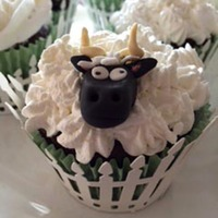 Cupcakes Sheep Chocolate cupcakes with vanilla frosting and fondant sheeps