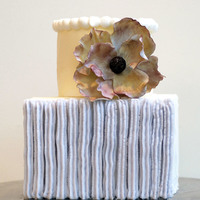 Modern Celebration Cake Modern yet vintage all buttercream cake with accent flower.
