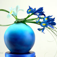 Cake With Dutch Iris  cake (size sports ball Wilton), covered with bleu/green fondant and airbrush bleu, dark bleu. Flowers are Dutch iris (cold porcelain) with...
