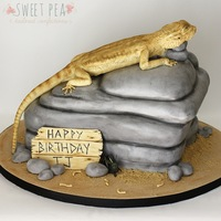 Bearded Dragon This cake was created for a little boy celebrating his 11th birthday. He has a pet bearded dragon which this was sculpted after!