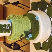 Moss, Fern And Ruffles Sweet Sixteen Cake I created this cake for my nature loving sixteen year old's surprise sweet sixteen.