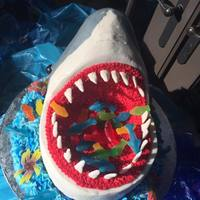 Shark Cake   This was a birthday cake for a little girl who had a shark themed pool party.