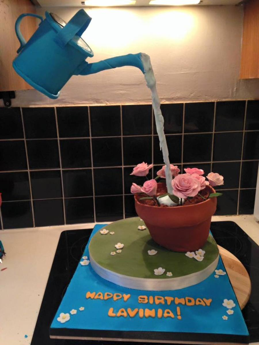 Anti Gravity Watering Can Cakecentral Com