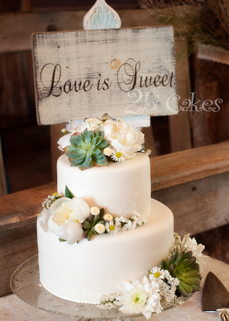 wedding cake decorated with succulents succulent wedding cake cakecentral 22367
