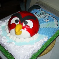 Angry Bird Full Cake Picture Two layers of cake - one gluten free the other a chocolate layer.