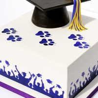 Graduation Cake Graduation Cake with paw prints