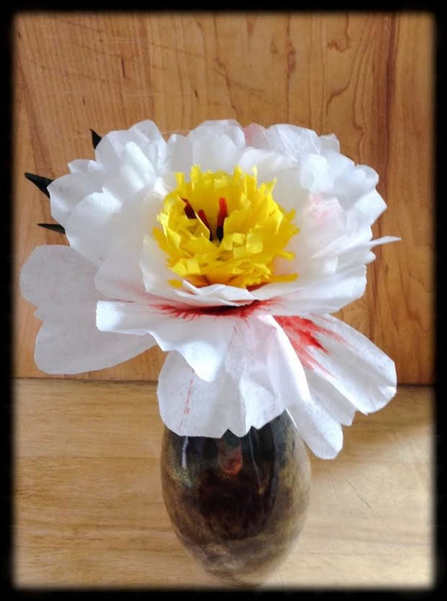 Coffee Filter Paper Tree Peony Cakecentral
