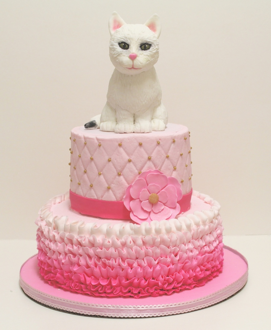 Cat Sculpted Cake With Ombre Pink Cakecentral Com
