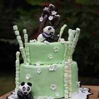 Pandas I made this cake for my son's 11th birthday. It is chocolate and vanilla, and marbled, covered with chocolate ganache and marshmallow...