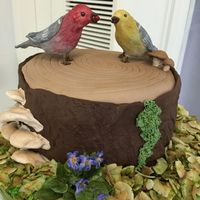 Single Tier Wedding Cake Tiramisu cake, covered with chestnut buttercream and fondant. Gumpaste violets and birds.