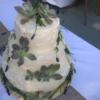 Natural Cake With Lavender And Ghost Plant Succulents organic cake with lavender and Ghost Plant succulents (edible, food safe), and boiled flour icing