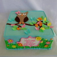 Square Owl Baby Shower Square owl baby shower cake with buttercream finish and fondant artwork