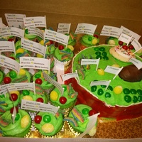 Edible Plant Cell Project My son and I did this together for his school project this year. He was required to make an edible plant cell. We made the extra cupcakes...