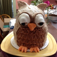 Wise Old Owl Cake Made for my son-in-law. Beak, eyes, and feet are fondant.