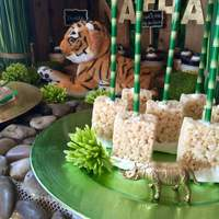 Zoo Dessert Table For 3 year old birthday