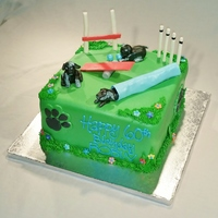 Dog Agility Course Cake Fondant covered dog agility course cake with fondant/gum paste decorations and puppies