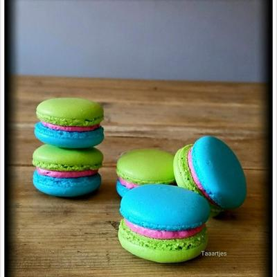 Green Blue Pink French Macarons