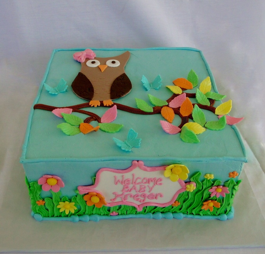 Square Owl Baby Shower on Cake Central