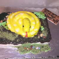 Snake Cake I made a snake cake for my sons 10th birthday! had some details to add because it was a snake and Jurassic world theme.