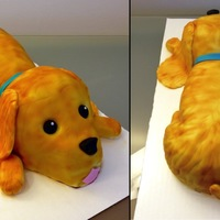 Dog Cake White velvet butter cake with chocolate neoclassic buttercream and chocolate ganache. Decorated with fondant.