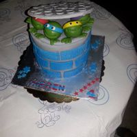 Birthday Cake   Ninja Turtle Cake
